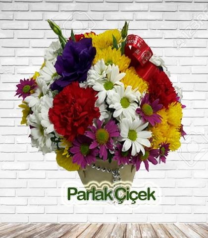 Seramik Vazoda Rengarenk Kır Çiçekleri