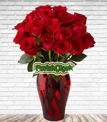 Aşkıma Kırmızı Gül