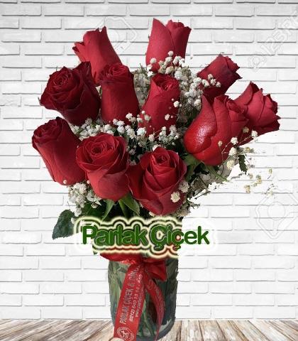 Kırmızı Aşk Vazoda 11